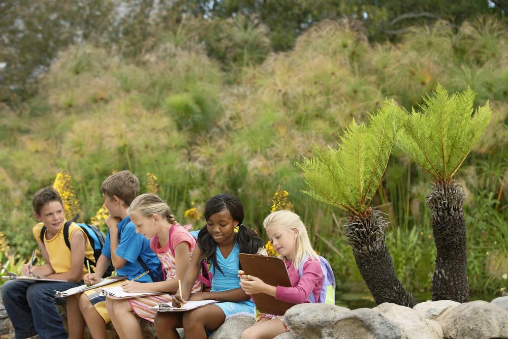 Los beneficios de los viajes escolares